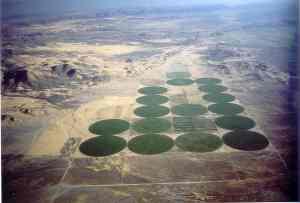 desertfarm